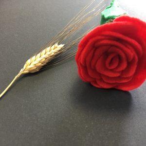Roses Felpa sense embolcall